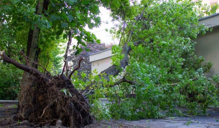 Irma rips toward U.S.  as Florida Keys brace for Hurricane's fury